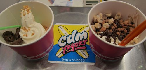 CdMFroyo_toppings